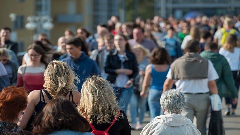 Aumenta Número de Afiliados en la Seguridad Social   Instituto santalucía
